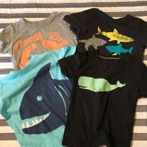 Boys T-shirts 3T perfect for a trip to the beach!
